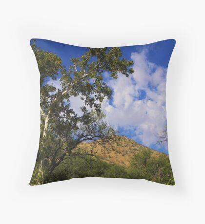 Arizona Sycamore Throw Pillow