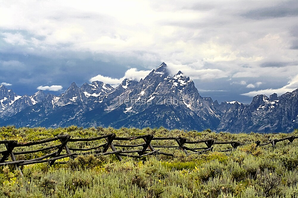 Grand Teton Range by Teresa Zieba