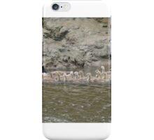 39 goslings iPhone Case/Skin