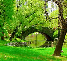 central park nyc bridge by Jonathan  Green