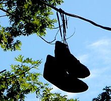 Sneakers On A Wire by Jonathan  Green