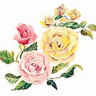 Pastel Roses by arline wagner