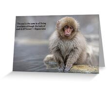 Animal soul Greeting Card