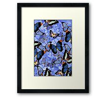 Composition With Echoed Butterflies #3 Framed Print