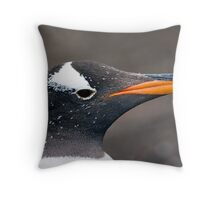 Portrait of a Gentoo Throw Pillow