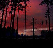 SKY FIRE 2 by Antanas