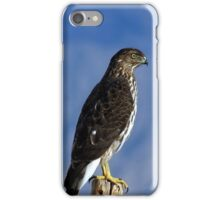 Daily Visitor - Coopers Hawk iPhone Case/Skin