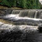 Lower Aysgarth Falls by Dave Warren