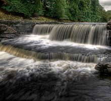 Lower Aysgarth Falls by Dave Warren