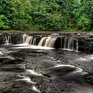 Upper Aysgarth Falls by Dave Warren