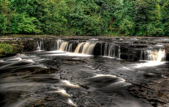 Upper Aysgarth Falls by Dave Warren