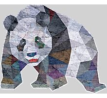 Panda Triangle Low Polygon Photographic Print