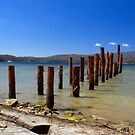 Remains of What Was, Tasmania by SusanAdey