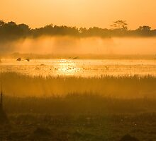 Dawn over the wetlands by Keith McGuinness