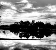 Black & White Reflections - Wonga Wetlands - The HDR Experience by Philip Johnson
