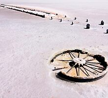 Wheel in Salt - Lake Hart by Hans Kawitzki