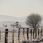 Winter view from Llaneglwys by KatharineH