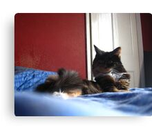 Silly Lily Canvas Print