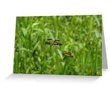 Dragon Fly Greeting Card