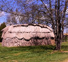 Longhouse_Indian Hamlet at St. Mary's City, Maryland by Hope Ledebur