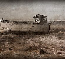 Ship Wreck by Simone Riley