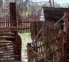 Colonial Poultry Yard by Hope Ledebur