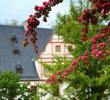 Hidden Renaissance Manor House by karina5
