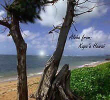Aloha from Kapa'a Hawaii by Dennis Begnoche Jr.