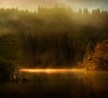 Misty Tranquility by Karl Williams