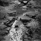 Innis Falls by goofygirl1977