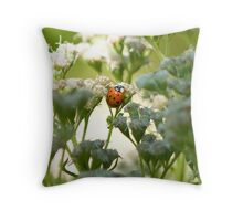 Ladybug on Common Water Parsnip Throw Pillow