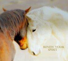 RENEW  YOUR  SPIRIT  by Jeanne  Nations