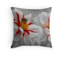 Hungry Bumble Throw Pillow