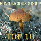 Fungilicious Group Top 10 Banner by KanaShow