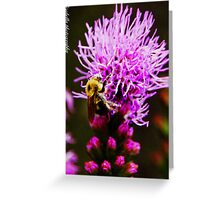 if i were a flower growing wild and free, all i'd want is you to be my sweet honey bee Greeting Card