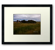 Leaning River Gums, Greenough, WA Framed Print