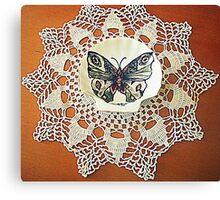 farfalla su merletto  Canvas Print