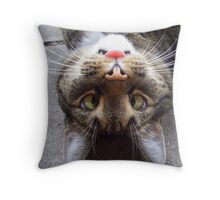 Silly Kitty Throw Pillow