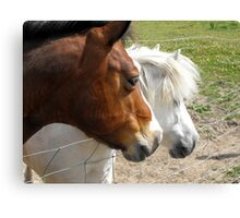 Just Look at That ! Canvas Print