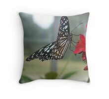 Glasswing Beauty Throw Pillow