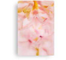 pink petals abstract macro Canvas Print