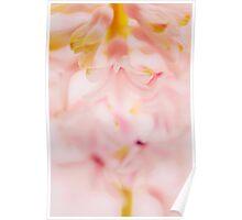 pink petals abstract macro Poster