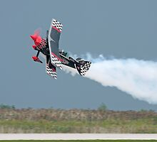 Stunt Plane by Karl R. Martin