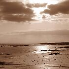 sepia sea scape by theresa knox
