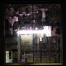 Lighting Shop Window #2 by Joan Wild