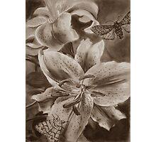 Panthea Photographic Print
