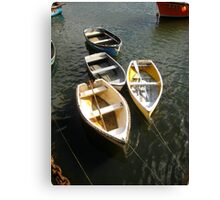 row your boats Canvas Print