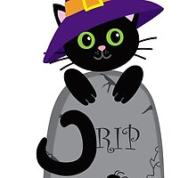 Black cat in the hat on the tombstone. Halloween. by Sandytov