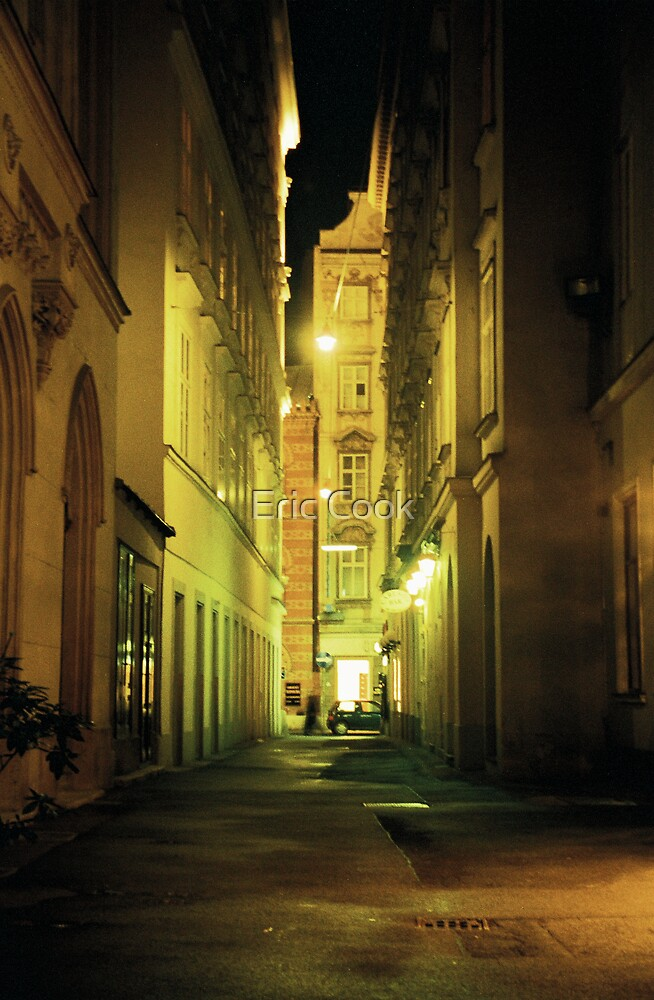 Alleyway - Vienna, Austria by Eric Cook