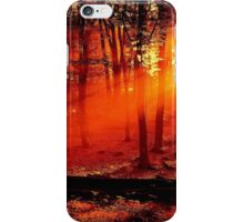 1 iPhone Case/Skin
